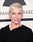LOS ANGELES - FEB 08:  Annie Lennox arrives to the Grammy Awards 2015  on February 8, 2015 in Los Angeles, CA