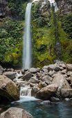 Dawson Falls New Zealand