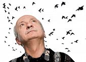 picture of 55-60 years old  - mature man looking up on sky with flying birds - JPG