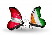 Two Butterflies With Flags On Wings As Symbol Of Relations Latvia And  Cote Divoire