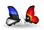 Two Butterflies With Flags On Wings As Symbol Of Relations Estonia And East Timor