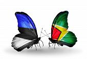 Two Butterflies With Flags On Wings As Symbol Of Relations Estonia And Guyana