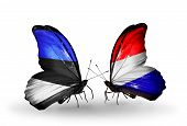 image of holland flag  - Two butterflies with flags on wings as symbol of relations Estonia and Holland - JPG