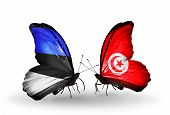 Two Butterflies With Flags On Wings As Symbol Of Relations Estonia And Tunisia
