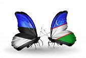 Two Butterflies With Flags On Wings As Symbol Of Relations Estonia And Uzbekistan