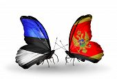 Two Butterflies With Flags On Wings As Symbol Of Relations Estonia And Montenegro