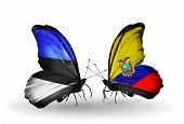 Two Butterflies With Flags On Wings As Symbol Of Relations Estonia And Ecuador