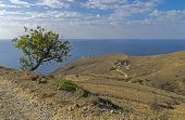 The Road To The Lighthouse. Crimea.