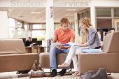 pic of mentoring  - Male College Student Working With Mentor - JPG