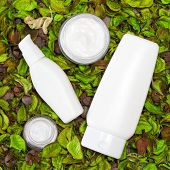 foto of cosmetic products  - Cosmetic skin care products surrounded by dry green leaves - JPG