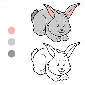 pic of color animal  - Game for children - JPG
