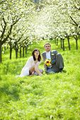 pic of wedding couple  - a just married in a flowering garden - JPG