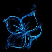 perfect blue fire flower on black background