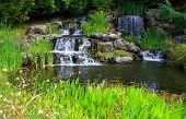 The Oregon Gardens