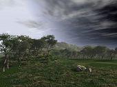 Beautiful countryside setting