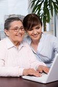 image of young adult  - Portrait of young girl and her grandmother looking at laptop screen during work and smiling - JPG
