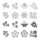 Spring Blossom Flowers Line And Silhouette Icons Set. Blossom Plant Flower Spring, Floral Nature Blo poster