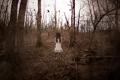 Forest Of The Darkness,3d Illustration Of Ghost Girl In White Dress In The Abandoned Forest ,scary B poster