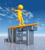 NET Top Level Domain
