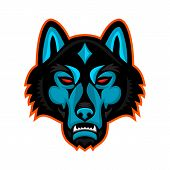 Mascot Icon Illustration Of Head Of A Gray Wolf Also Known As The Timber Wolf Or Western Wolf, Viewe poster