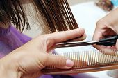 stock photo of hair comb  - Hair cutting hair stylist at work with scissors - JPG