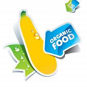 Icon Zucchini With Arrow By Organic Food. Vector Illustration