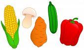 Conjunto de vegetal: milho, cogumelo, batata-doce, pepino e pimenta