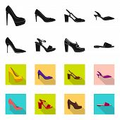 Isolated Object Of Footwear And Woman Sign. Set Of Footwear And Foot Stock Symbol For Web. poster