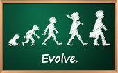 Evolutie op een gedetailleerde schoolbord