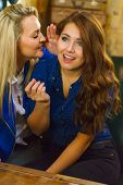 Gossips With Best Friend. Young Woman Telling Her Friend Some Secrets, Two Women Talking Gossiping I poster