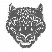 Snow Leopard Roar Face Or Head. Hand Drawn Leopard Head Animal Or Predator Isolated On White Backgro poster