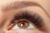 Treatment of Eyelash Extension. Lashes. Woman Eyes with Long Eyelashes. poster