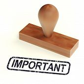 Important Rubber Stamp Shows Critical Information