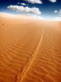 Постер, плакат: пейзаж пустыни
