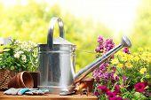 Flores y herramientas de jardinería al aire libre