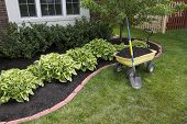 stock photo of weed  - Mulching bed around the house and bushes wheelbarrel along with a showel - JPG