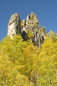 Fall Colors In The Black Hills