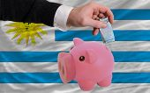 Funding Euro Into Piggy Rich Bank National Flag Of Uruguay