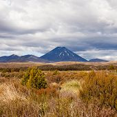 Active volcano Mount Ngauruhoe in Tongariro NP NZ