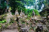 Magic Buddha garden