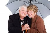 cute senior husband and wife under an umbrella on white