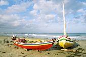 Brazilian Jangada Fishing Boats Jericoacoara