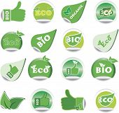 Set Of Green Bio And Eco Stickers.