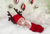 Babby Reindeer