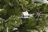 Christmas House and Pine