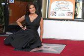 LOS ANGELES - NOV 8:  Mariska Hargitay at the Mariska Hargitay Hollywood Walk of Fame Star Ceremony