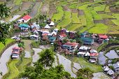 Terrace rice fields and the Batad village in Philippines