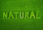 natural word made of green grass