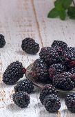 fresh picked blackberries on picnic table