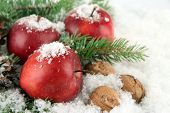 Red apples with fir branches and nuts in snow close up